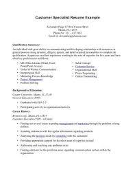 Professional Summary Resume Examples Customer Service Create