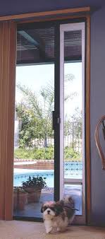 photo this pet door panel uses energy efficient glass and fits into a standard sliding track