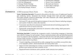 Digital Marketing Resume Template Teller Resume Objective