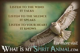 Hawk Quotes Sayings Animal Quotes Sayings