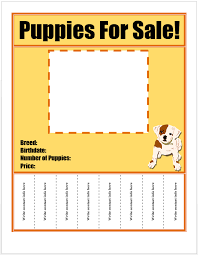 Puppies For Sale Flyer Template Puppies For Sale Pets For