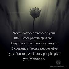 Life Experience Quotes Adorable Never Blame Anyone LIFE Quotes
