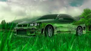 nissan skyline gtr r34 crystal nature car