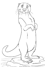Small Picture Otter Coloring Pages Otters Meerkat Sloth Ferret