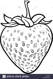 black and white strawberry clipart. Interesting Strawberry Strawberry Illustration For Coloring Book  Stock Image On Black And White Strawberry Clipart B