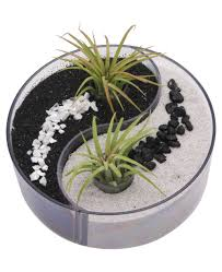 feng shui plants for office. Serene Yin Yang Design Desktop Zen Garden With Living Air Plants. (Buddhagroove $48) Feng Shui Plants For Office -