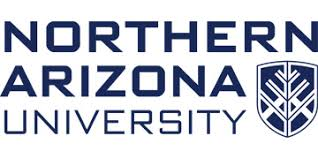 Associate Dean, Nau Online And Innovative Educational Initiatives ...