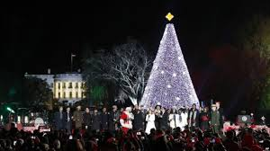 Cone Shaped Christmas Tree Lights Visitors To National Christmas Tree In Washington Strolled