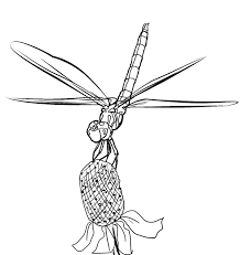 Small Picture FREE Dragonfly Coloring Page 17