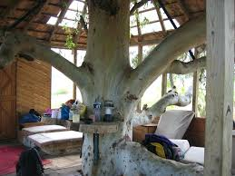 treehouse furniture ideas. Treehouse Decor Tree House Furniture Interior Exterior Designs Decorating Ideas