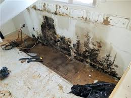 removing mold from bathroom walls