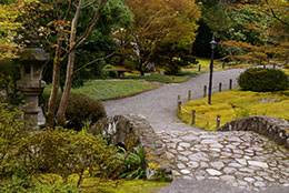 Small Picture Japanese Garden Design Delights