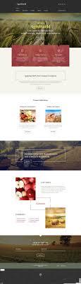Best 25 Website Template Ideas On Pinterest Business Website