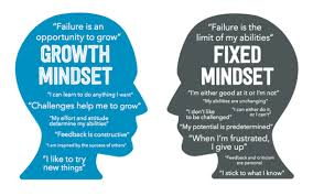 Growth Mindset Quotes Adorable The Value Of A 'Growth Mindset' In Education