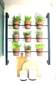 decoration herb garden kit indoor kitchen medium size of diy