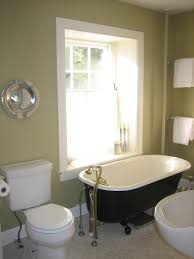 Pictures Of Purple Bathrooms Tags  Pictures Of Bathrooms Modern Modern Bathroom Colors