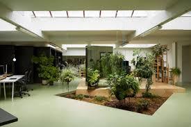 Indoor Garden Maintain An Indoor Garden