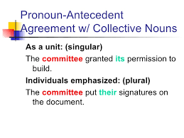 Pronoun Antecedent Agreement Pronoun Antecedent Powerpoint
