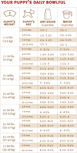How Much To Feed A Puppy Chart Puppy Feeding Weight Online Charts Collection