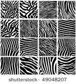 Zebra Patterns Magnificent Zebra Pattern Free Vector Art 48 Free Downloads