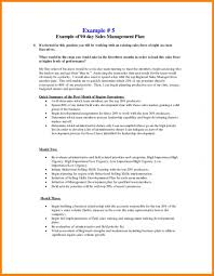 030 Sales Rep Business Plan Template Free For Reps New