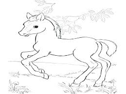 Realistic Horse Coloring Pages Coloring Page Of Horse Coloring Page