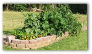 Small Picture Raised Vegetable Garden Plans and Ideas