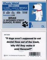 Driver Brian Griffin Rhode Of Family The Dog Island Guy