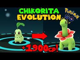 Evolve Chikorita Pokemon Go