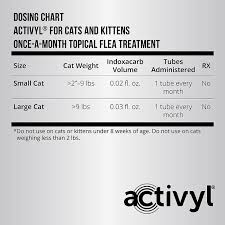 Activyl For Cats Kittens