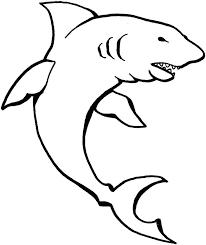Outline Of A Shark Originalyric Info