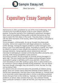 good expository essay examples co good expository essay examples