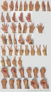 17 best images about anatomy studies cartoon human hands references