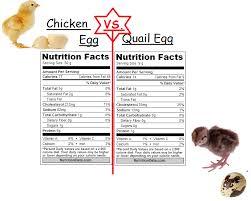 Chicken Egg Nutrition Chart I Love My Quail Chicken Egg Vs Quail Egg Nutrition Facts