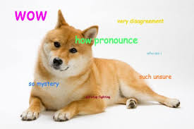 doge dog. Delighful Dog The Meme Known As Dogeu2014in Which Photos Of Dogs Usually Shiba Inus Are  Labeled With Internal Monologues Like U201cwowu201d U201csuch Adjectiveu201d And U201cvery  On Doge Dog I