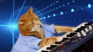 Keyboard Cat, a Beloved Internet ...