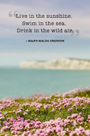 Beautiful Summer Quotes Best of 24 Absolutely Beautiful Quotes About Summer Pinterest Sunshine