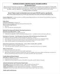 Nursing Student Resume Sample Nursing Experience Resume Thrifdecorblog Com