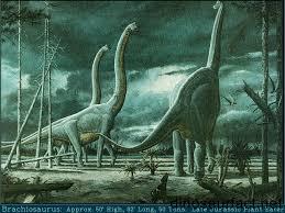 brachiosaurus size brachiosaurus dinosaur