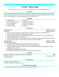 Web Designer Resume Example App Developer Job Description Sample Resume For Web Designer 17