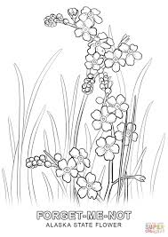 Small Picture Alaska State Flower coloring page Free Printable Coloring Pages