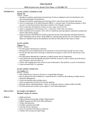 Sales Admin Resume Samples Velvet Jobs