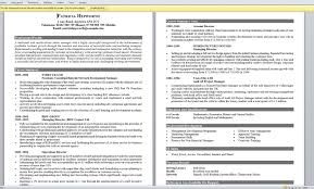 Great Example Resumes Interesting A Good Resume Resume For Study