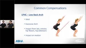 Nasm One Rep Max Chart Corrective Exercise Maximize Client Recovery Movement Quality