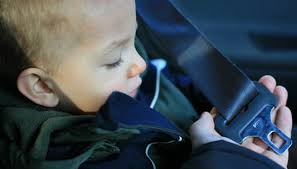 the alpha omega elite car seat by cosco juvenile converts into a seat belt positioned