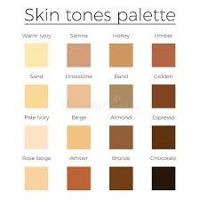 Skin Tones Color Palette Vector Stock Vector Illustration