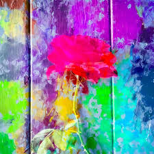 Red Rose With Pink Purple Blue Green Yellow Painting Abstract