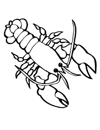 Small Picture Marine Animal Coloring Pages