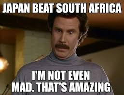 Internet pokes fun at the Boks: All the memes   Sport24 via Relatably.com