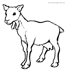 Small Picture Goat Coloring Page Gif Goat Coloring Page In Animals Coloring